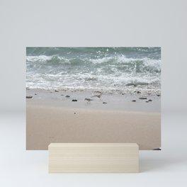 Seashore Sandpipers in tideland Mini Art Print