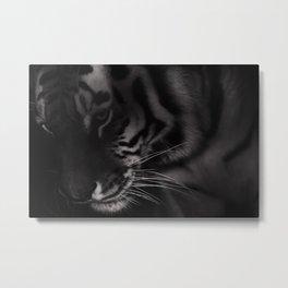 Tiger Monochrome Metal Print