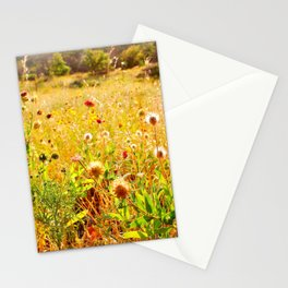 (Texas) Field of Dreams Stationery Cards