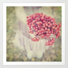 Mountain Ash Art Print