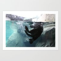 otter Art Prints featuring Otter by RMK Photography