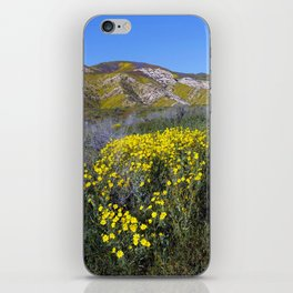 Carrizo Plain National Monument California iPhone Skin