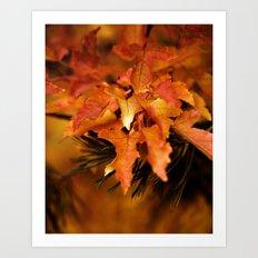 Burnt Orange Leaves Art Print