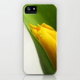 Tulip. iPhone Case