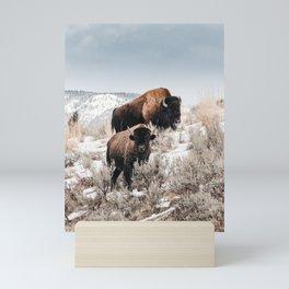 Bison Bulls in Yellowstone Mini Art Print