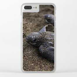 Baby Leather back Sea Turtle Clear iPhone Case