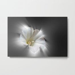 Shining in the dark Metal Print