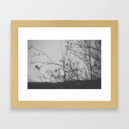 Not Everything Is Black and White Framed Art Print