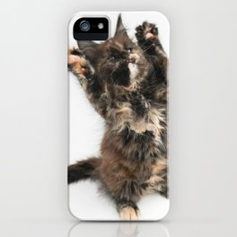Huckleberry iPhone Case