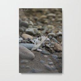 ... walk on the beach ... Metal Print