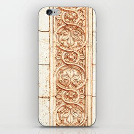 carved stonework iPhone Skin