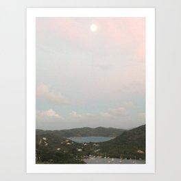 VI 2 Art Print