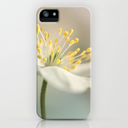 Loveable Wood Anemone... iPhone Case