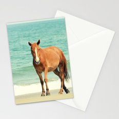 Wild Mustang of Carova, NC Stationery Cards