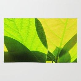 Avocado Leaves Rug