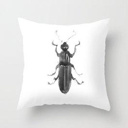 Dhysores quadriimpressus Throw Pillow