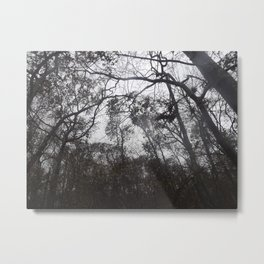 Trees on  a Stormy Day Metal Print