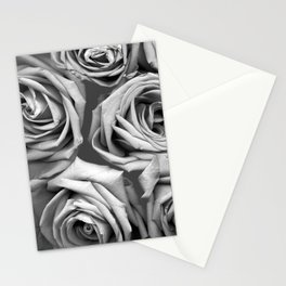 BW Roses Stationery Cards
