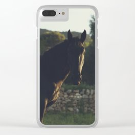 Wild stallion photo, black horse and italian sunset, original print for animal lovers, landscape Clear iPhone Case
