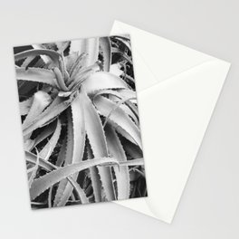 Aloe Stationery Cards
