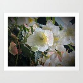 Flower with dewdrop in Butchart's garden Art Print