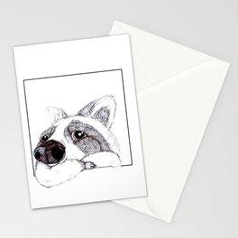 Lazy Raccoon Stationery Cards