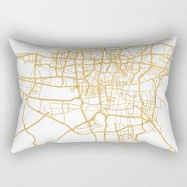 TEHRAN IRAN CITY STREET MAP ART Rectangular Pillow