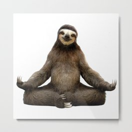Sloth Yoga Art Print Metal Print