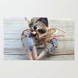 Haunting Crawfish Rug