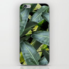 Topical palm leaf, banana leaf, black background, greens, Beach Hawaii decor iPhone Skin