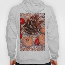 Rosa coxis in arbores autumnales Hoody