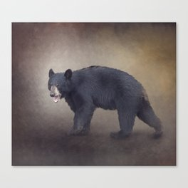 Young American Black Bear digital painting Canvas Print