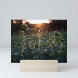 Almost Bloomed Mini Art Print