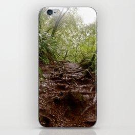Cataract Trail iPhone Skin