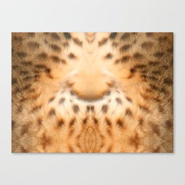 living fur Canvas Print