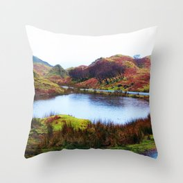 Fairy Glen, Isle of Skye Throw Pillow