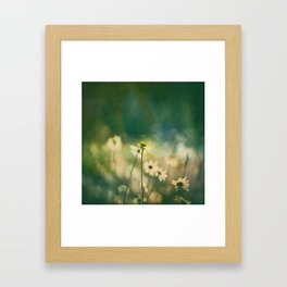 He Loves Me, Daisies Wildflowers Framed Art Print