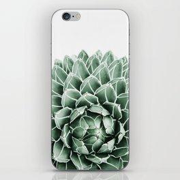 Succulent splendour iPhone Skin