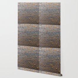 Water Drops on Wood 6 Wallpaper