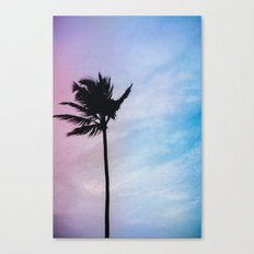 Single Palm Canvas Print