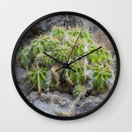 Lonely Cacti Wall Clock