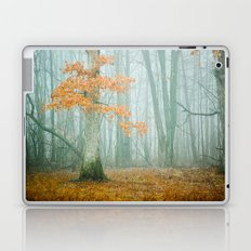 Autumn Woods Laptop & iPad Skin