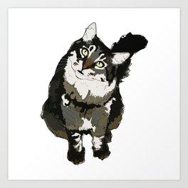 Cat Yellow Eyes Art Print