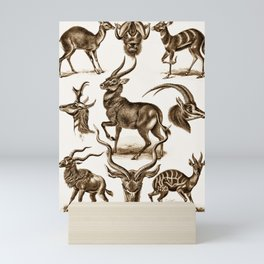 Ernst Haeckel Antilopina Antelope Mini Art Print