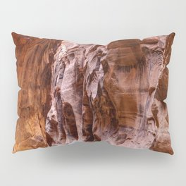 Hike in The Narrows Zion National Park Utah Pillow Sham
