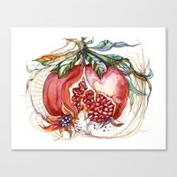 pomegranate Canvas Prints featuring Pomegranate by Irina Vinnik