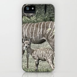 Kudu Antelope Mother with Baby, Muted Color iPhone Case