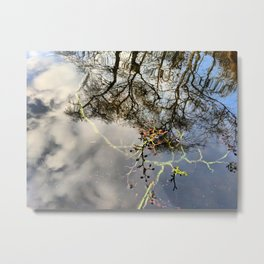 Tee Lake Tree Reflections Metal Print