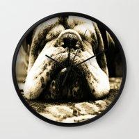 bulldog Wall Clocks featuring Bulldog by Urlaub Photography