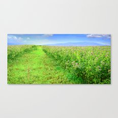 Scent of a Green Field after Rain Canvas Print